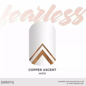 🆕 💅🏼 Jamberry Nail Wraps  Copper Ascent